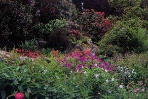 Knockcree Gardens