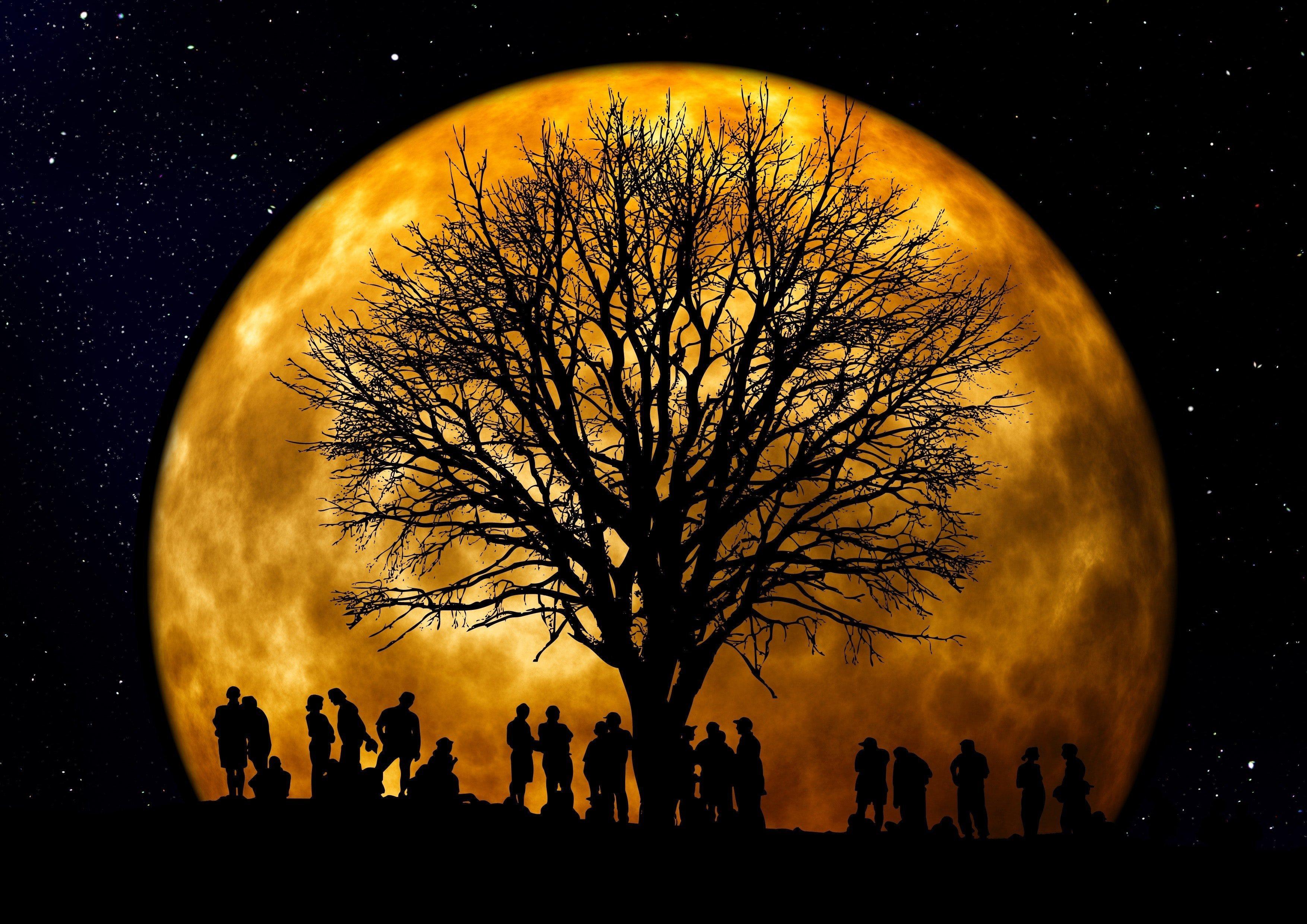 Nočná prehliadka modranského cintorína