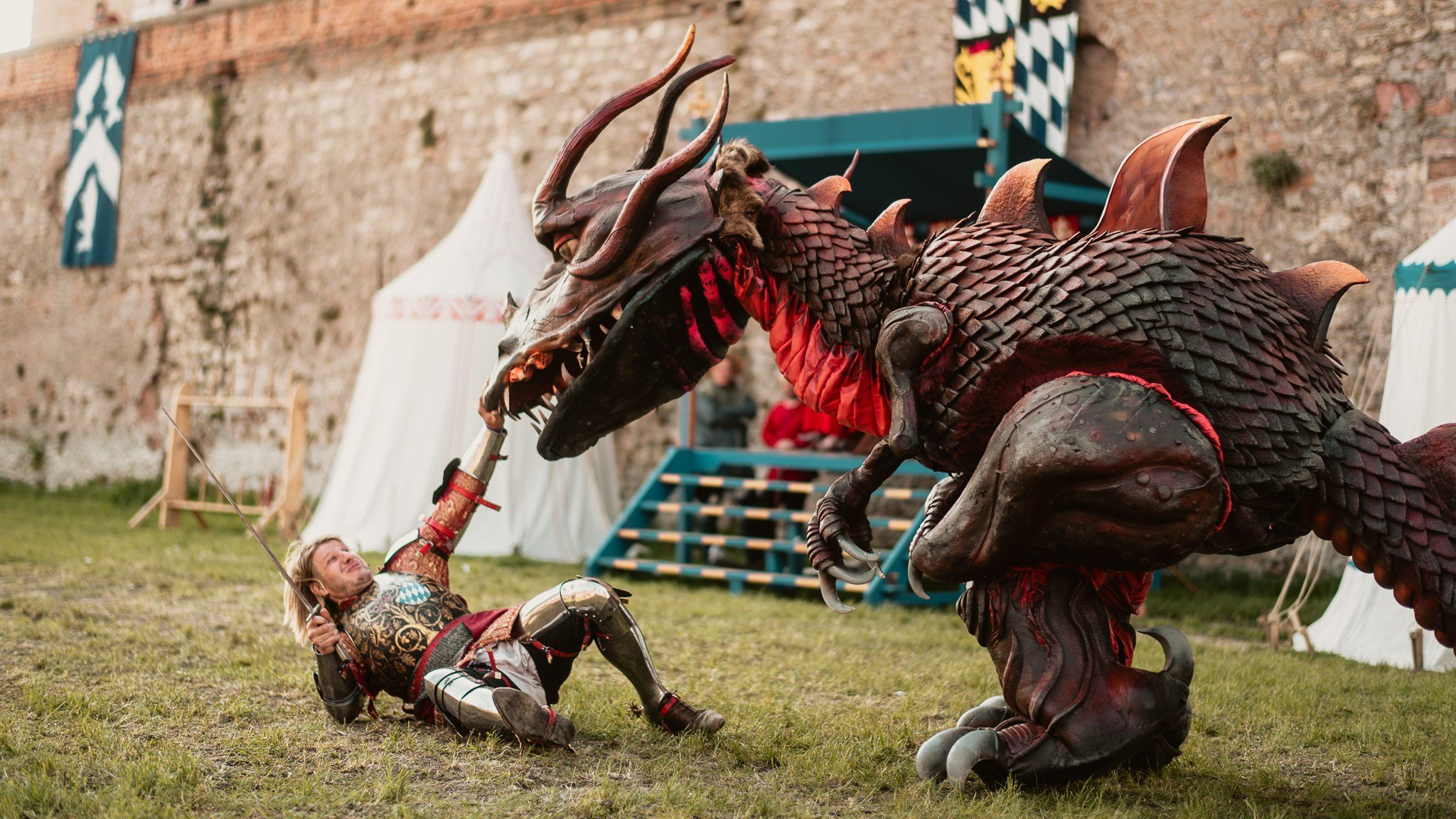 Dragons at the castle