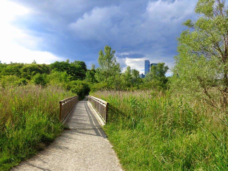 Hike to Wienerberg
