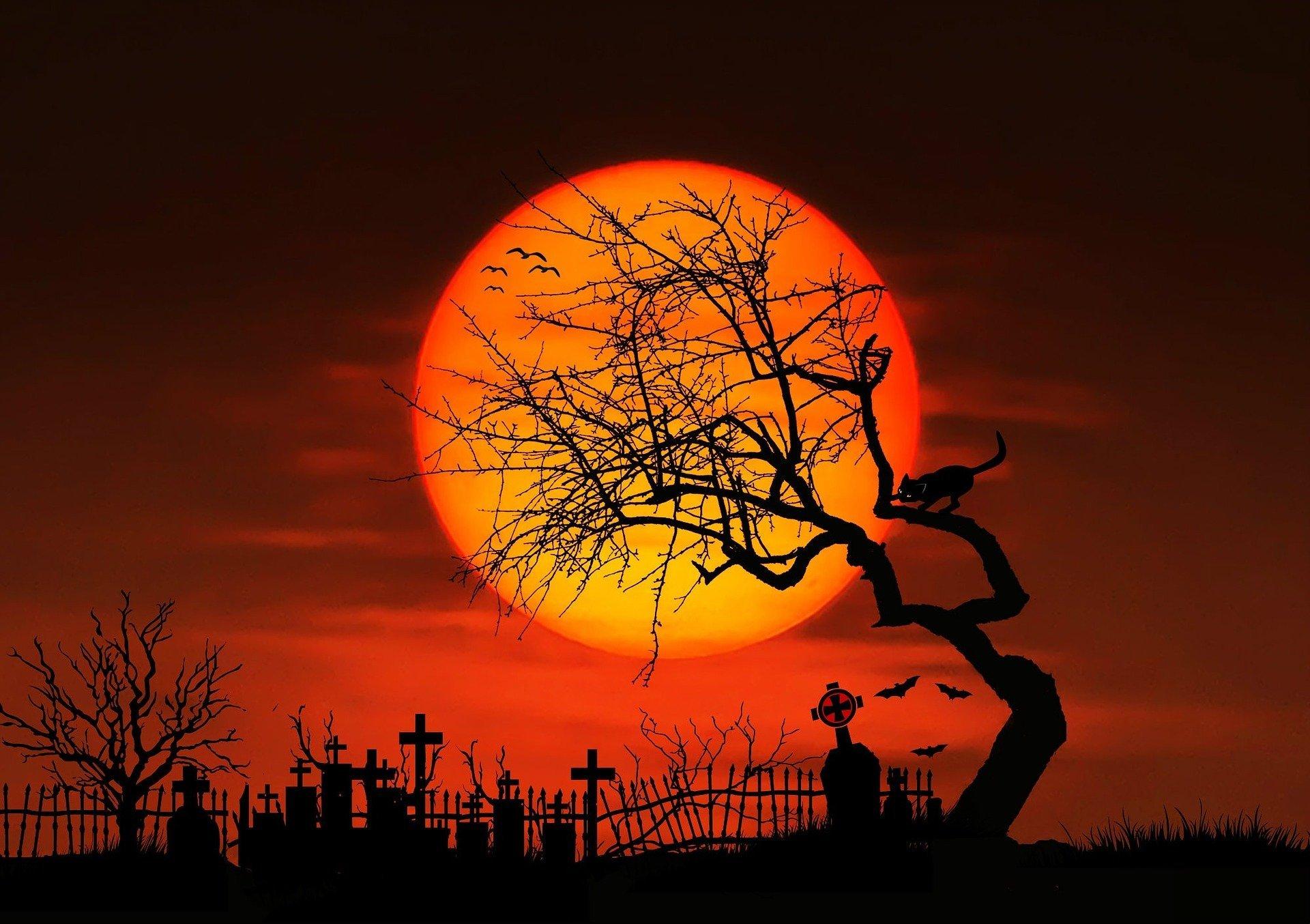 Splnová cintorínska prehliadka