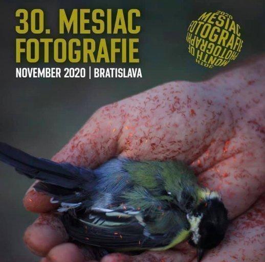 Month of Photography Bratislava