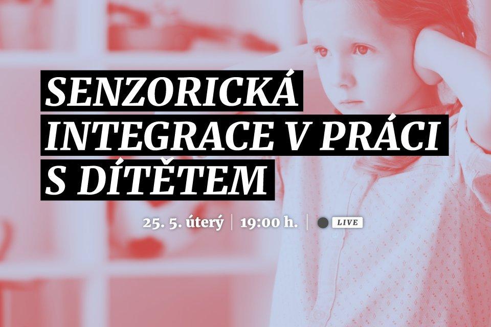 Senzorická integrace v práci s dítětem | Webinář