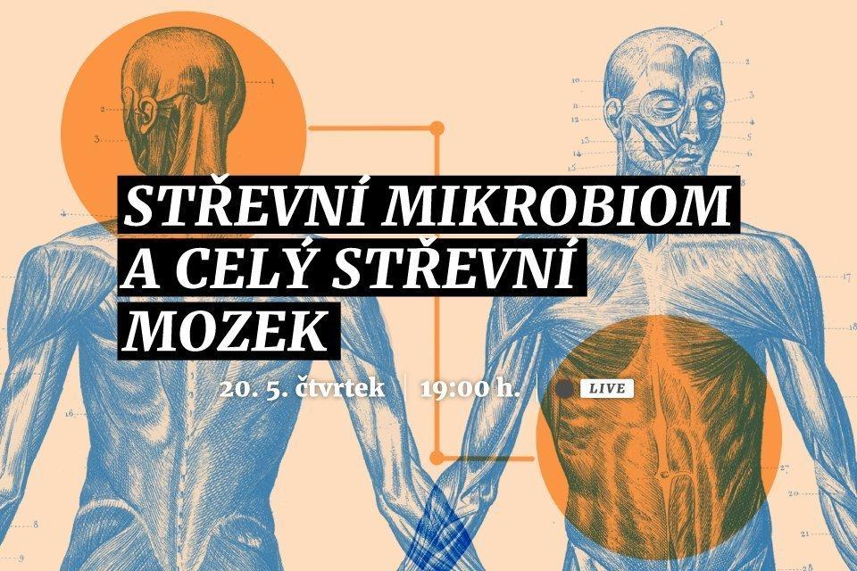 Střevní mikrobiom a celý střevní mozek
