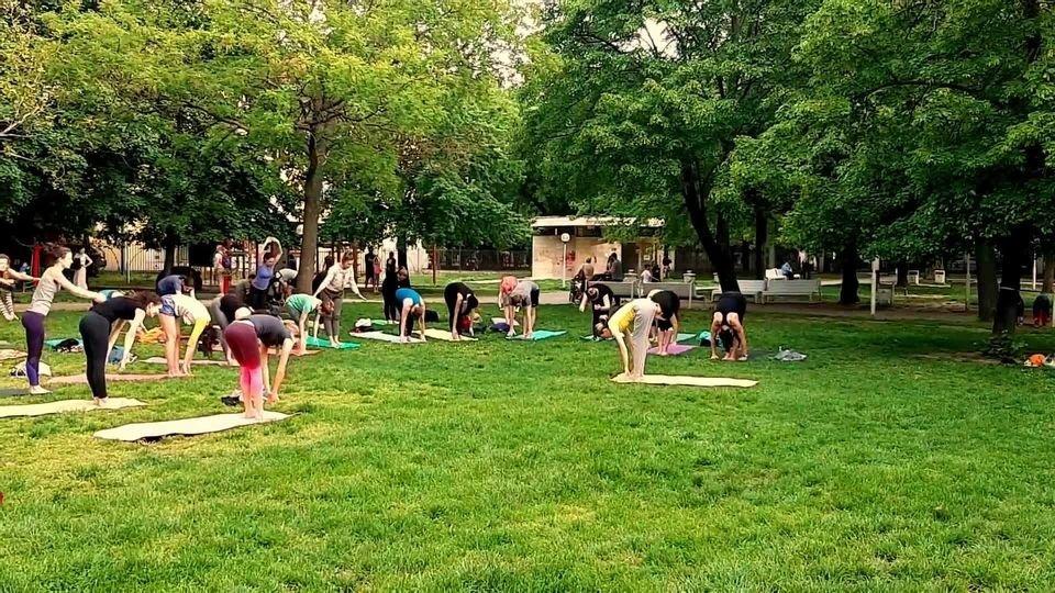 Yoga in Medicka Garden