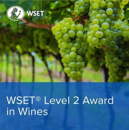 Learn and Taste Wines in the Heart of Stockholm